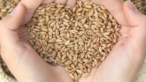 Fibre for Heart health