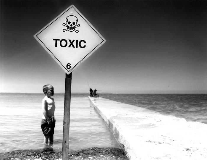 Are you living in a sea of toxins